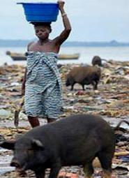 A picture of life for the ordinary Sierra Leonean as their thieving overlords feed fat on corruption