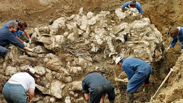 Forensic investigators examine a mass grave